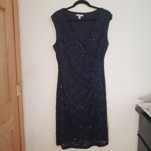 Dress Barn Navy Lace with Sequins Stretch Dress